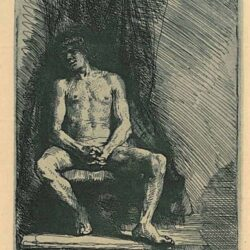 Rembrandt, etching, Bartsch B. 193, Nude man seated before a curtain
