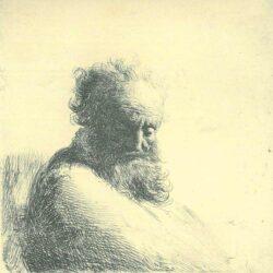 Rembrandt, etching, Bartsch B. 260,