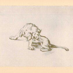 Rembrandt, zeichnung, hofstede de groot 275, Studienblatt mit vier Löwenköpfen
