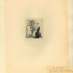 Rembrandt, Ets, Bartsch B. 372, Blad met twee studies: een boom, en het bovenste gedeelte van het hoofd van de kunstenaar met een fluwelen baret op