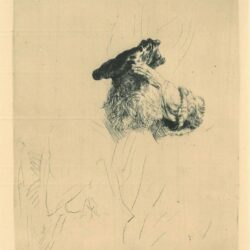 Rembrandt, Etching, Bartsch B. 259, Old man shading his eyes with his hand